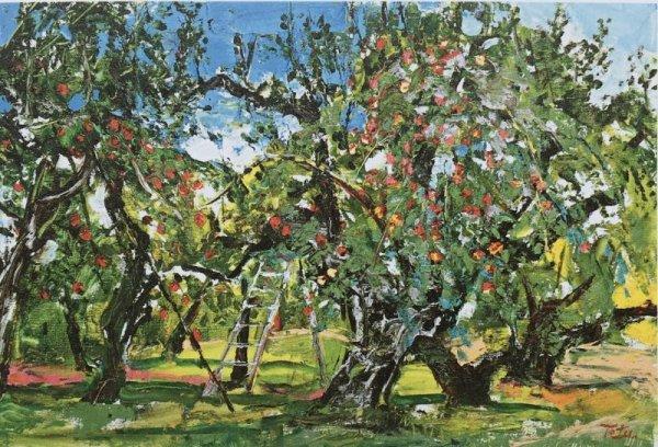 画像1: りんご園 (1)